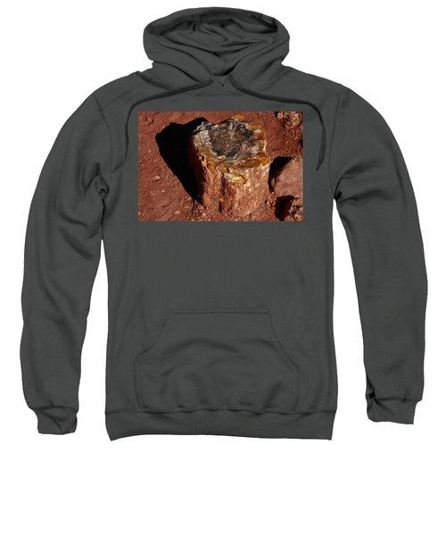 Petrified Forest Sweatshirt