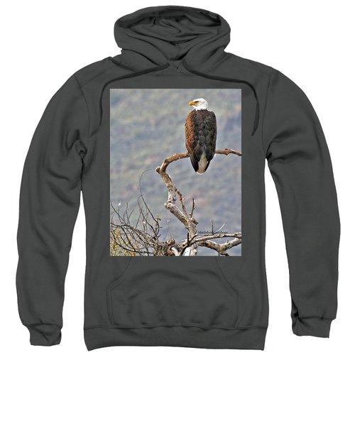 Phoenix Eagle Sweatshirt