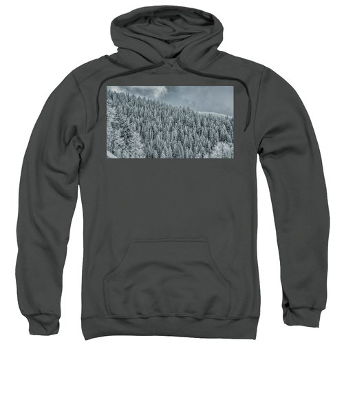 Winter Pines Sweatshirt