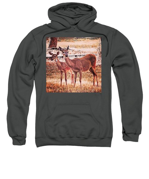Photoshopping My Two Favorite #deer Sweatshirt