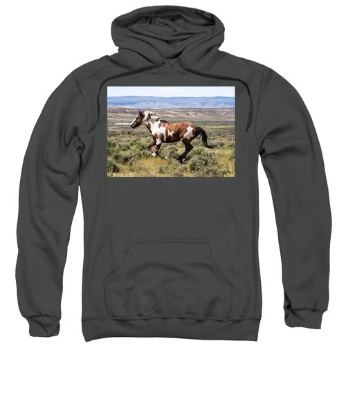Picasso - Free As The Wind Sweatshirt