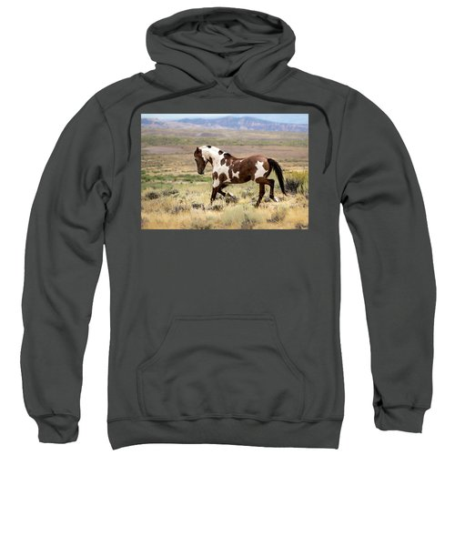 Picasso Strutting His Stuff Sweatshirt