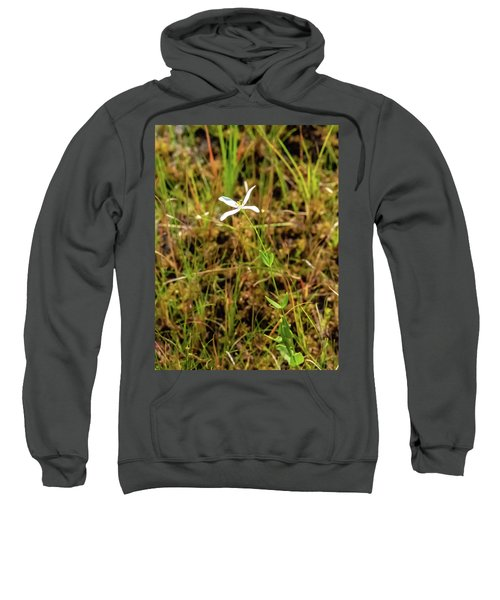 Pine Lands Endangered Plant Sweatshirt