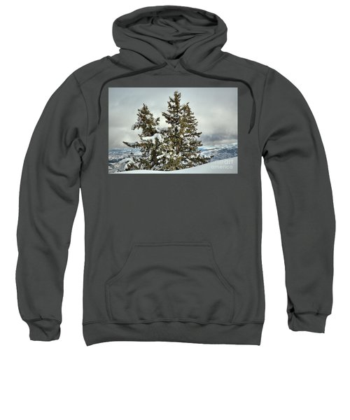 Pine Trees In The Clouds Sweatshirt