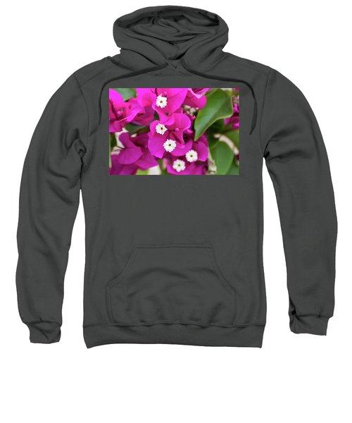 Pink And White Flowers Sweatshirt