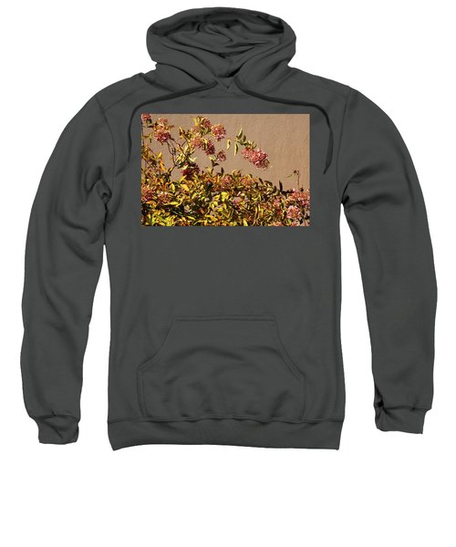 Pink Autumn Sweatshirt