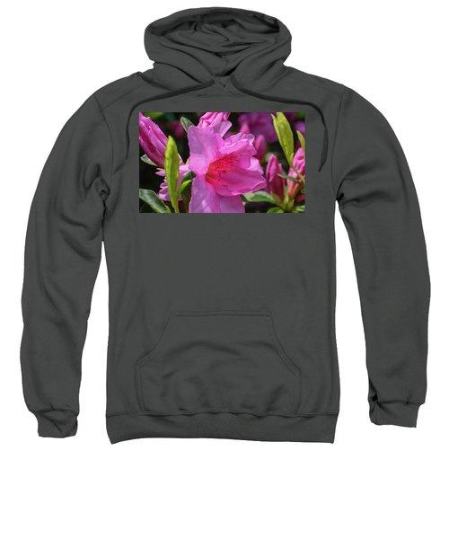 Pink Azalea Sweatshirt