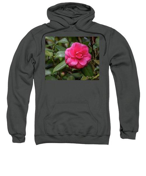 Pink Camelia 02 Sweatshirt