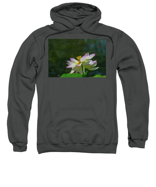Pink Lotus Embracing The Sun Sweatshirt