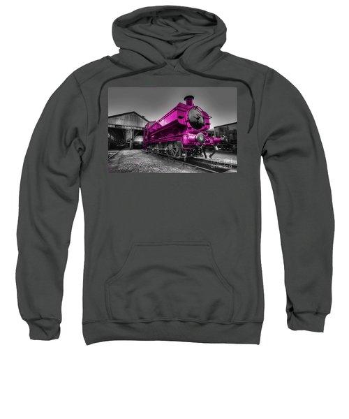 Pink Pannier  Sweatshirt
