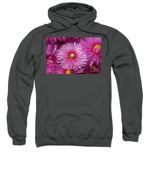 Pink Pigface Flowers Sweatshirt