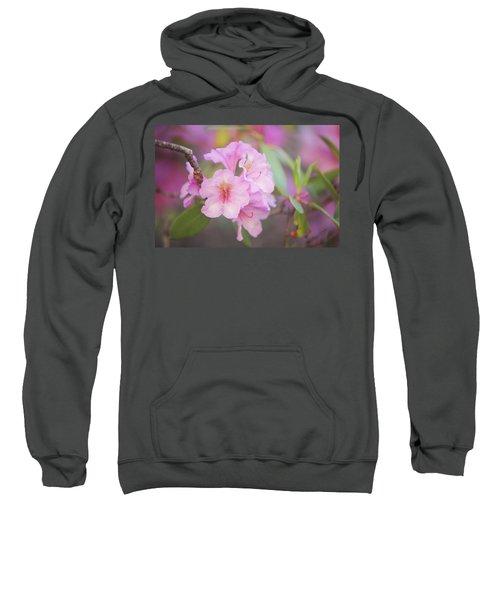 Pink Rhododendron Flowers Sweatshirt