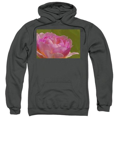 Pink Rose #d3 Sweatshirt