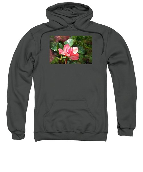 Pink Roses In The Rain 2 Sweatshirt