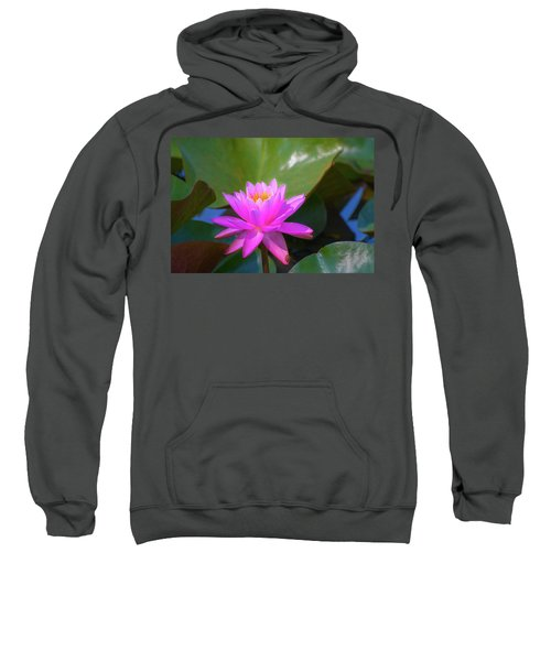 Pink Water Lilly And Ladybugs Sweatshirt