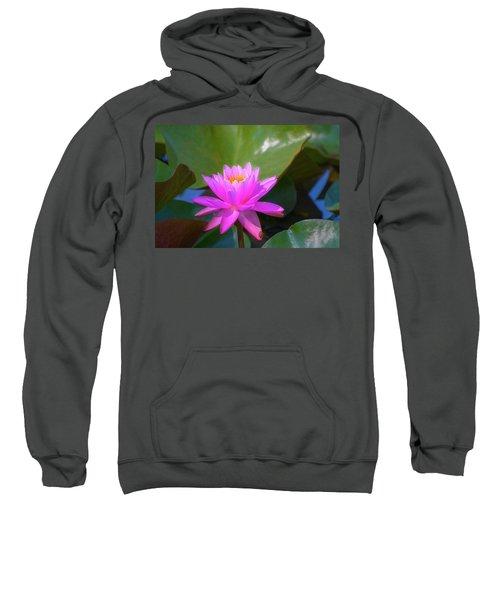 Pink Water Lilly And Ladybugs Sweatshirt