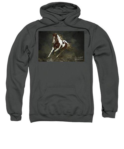 Pinto Horse In Motion Sweatshirt