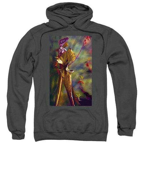 Pitcher Plant Sweatshirt