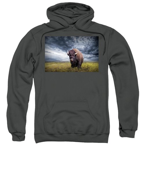 Plains Buffalo On The Prairie Sweatshirt