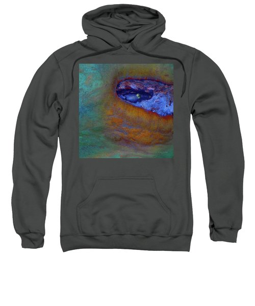 Planet Earth Sweatshirt