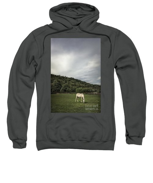 Pleasant Valley Sunday Sweatshirt