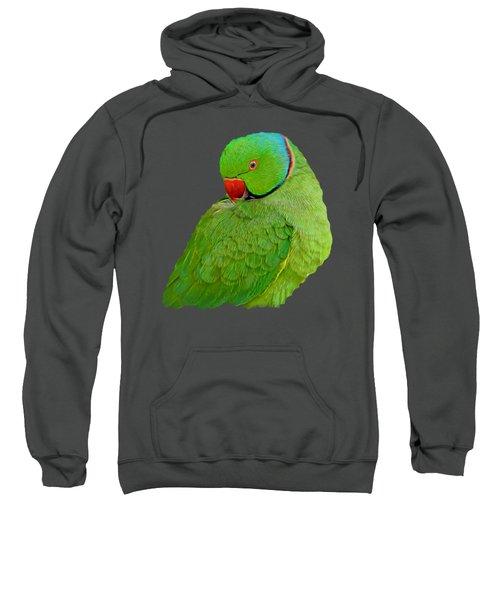 Plucking My Feathers Sweatshirt