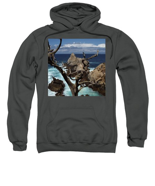 Point Lobos Rocks And Branches Sweatshirt
