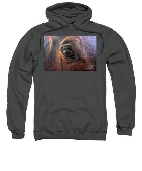 Point Of View Sweatshirt