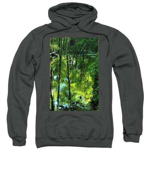 Pond On Gabrielino Trail Sweatshirt