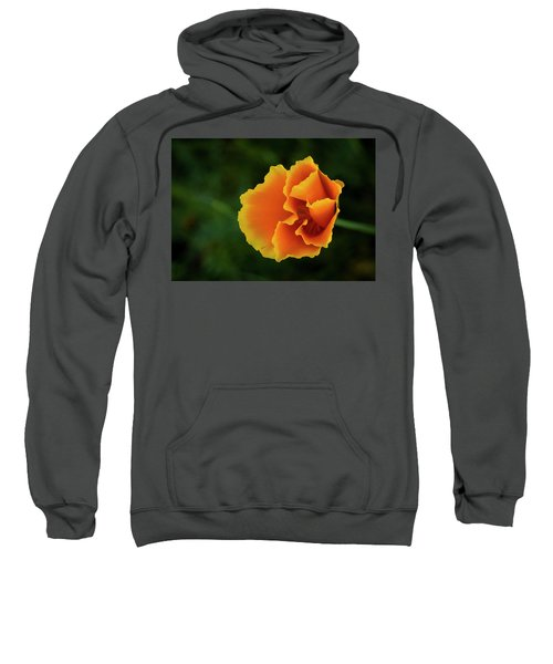 Poppy Orange Sweatshirt