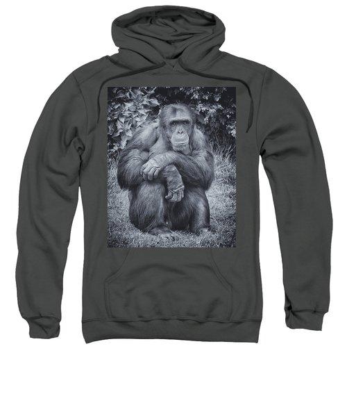 Portrait Of A Chimp Sweatshirt