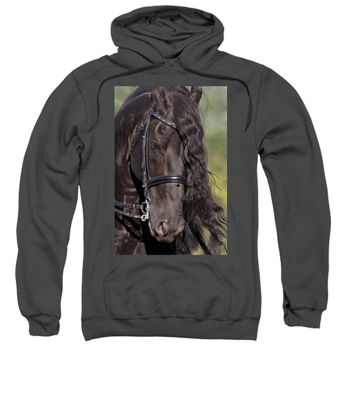 Portrait Of A Friesian Sweatshirt