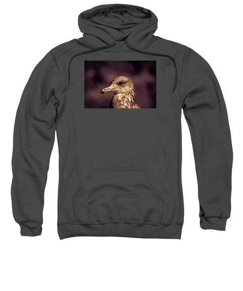 Sweatshirt featuring the photograph Portrait Of A Gull by Lora Lee Chapman