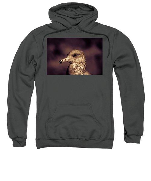 Portrait Of A Gull Sweatshirt