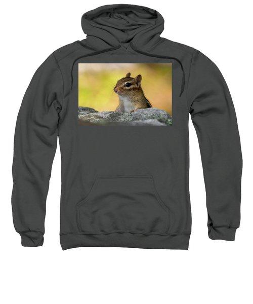 Posing Chipmunk Sweatshirt