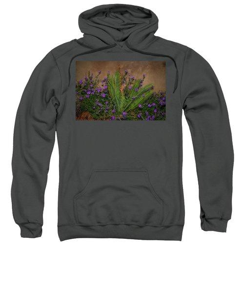 Postcard Perfect Sweatshirt