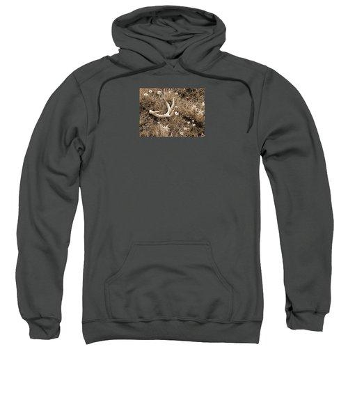 Prairie Spring Sweatshirt
