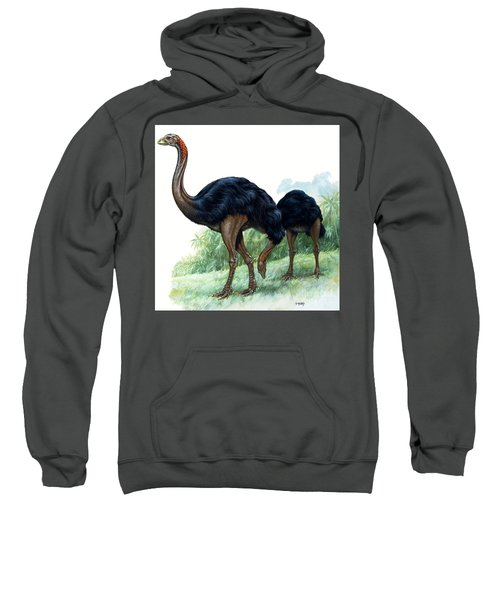 Pre-historic Birds Sweatshirt