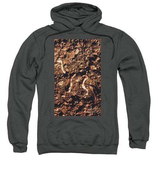 Prehistoric Diplodocus Bones Sweatshirt