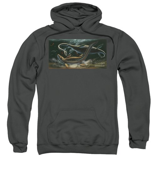 Prehistoric Marine Animals, Underwater View Sweatshirt by American School