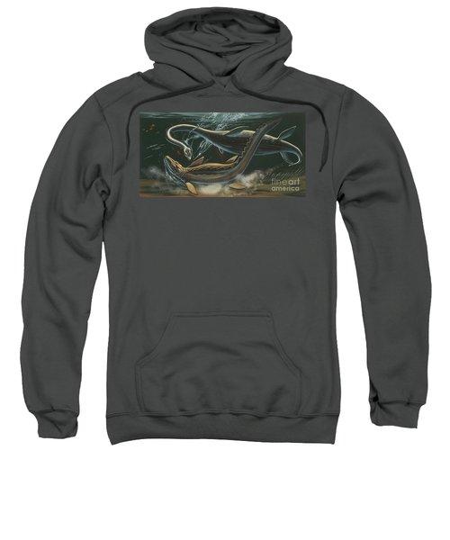 Prehistoric Marine Animals, Underwater View Sweatshirt