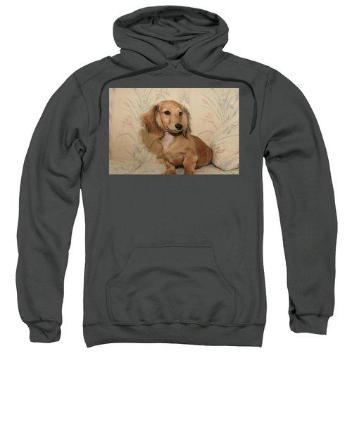 Pretty Pup Sweatshirt