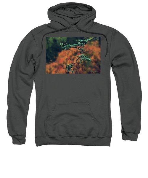 Prickly Green Sweatshirt
