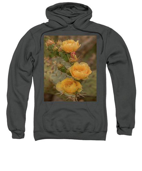 Prickly Pear Blossom Trio Sweatshirt