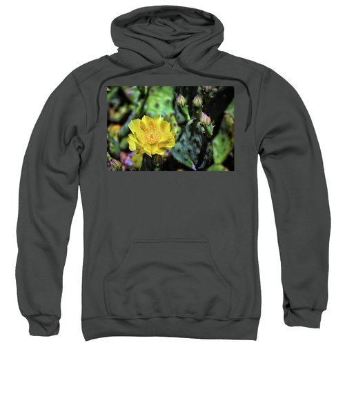 Prickly Pear Cactus Flower On Assateague Island Sweatshirt