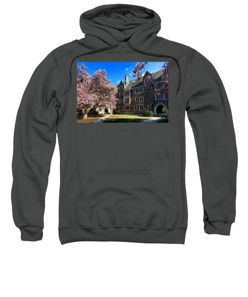 Princeton University Pyne Hall Courtyard Sweatshirt