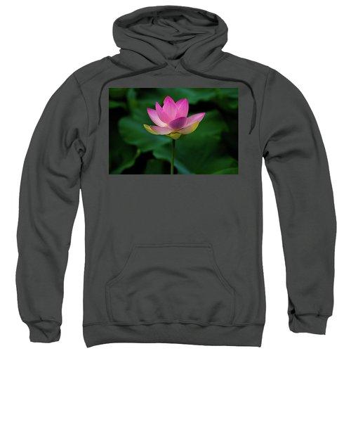Profile Of A Lotus Lily Sweatshirt