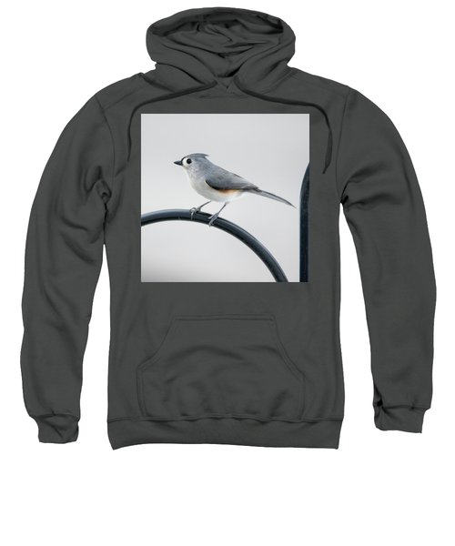 Profile Of A Tufted Titmouse Sweatshirt