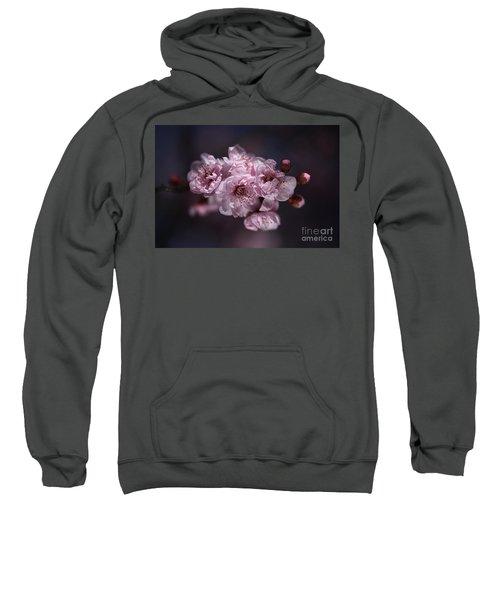 Prunus A Pink Spring Sweatshirt
