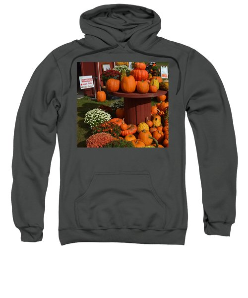 Pumpkin Display Sweatshirt
